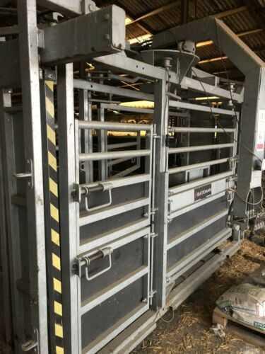 Bateman Fully Hydraulic Cattle Crush